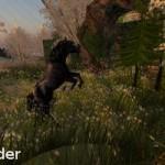 Second Life Avatars - Thunder the Black Stallion